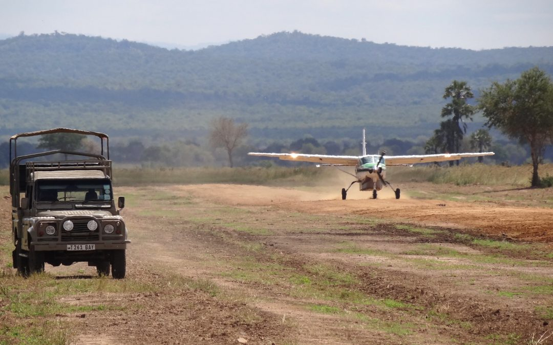 Light Airplanes and Wildlife Management in the Serengeti